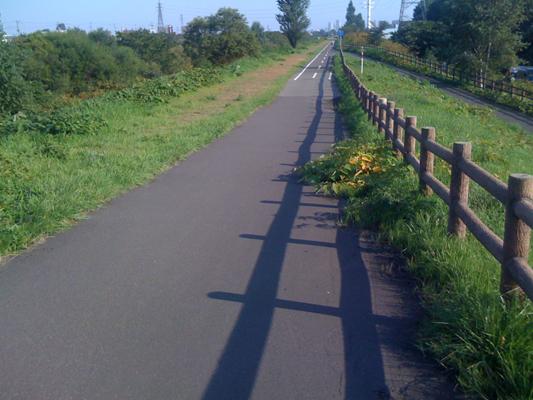 新川左岸サイクリングロード2.jpg